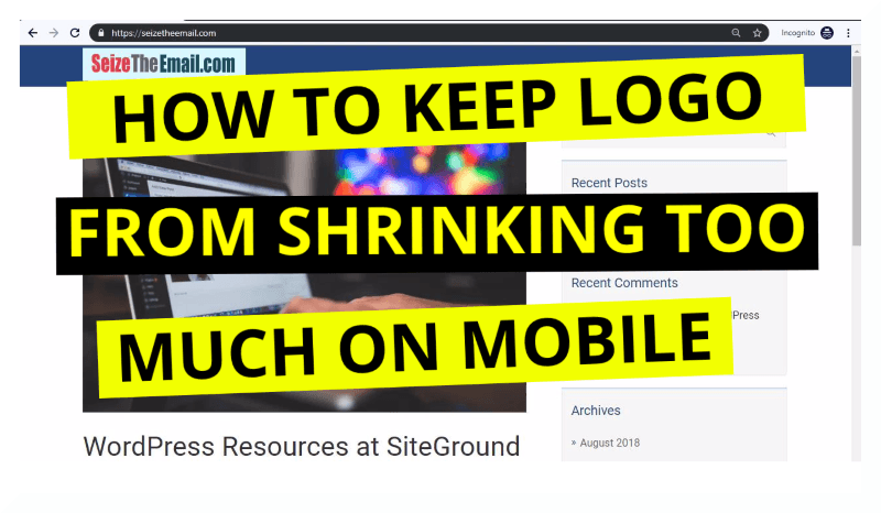How to keep logo from shrinking too much on mobile